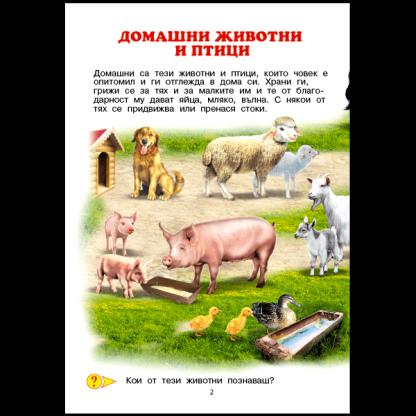 Домашните животни - страница 2